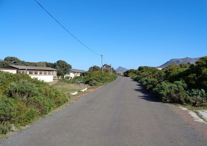 Street context in Betty's Bay, 2014