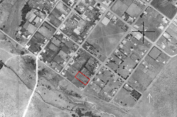 1938 aerial photograph of a portion of Stanford